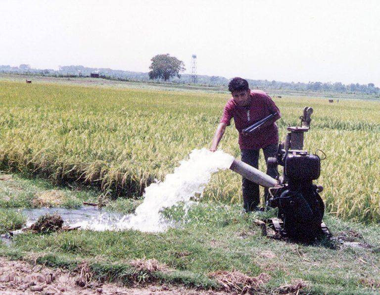 乾季稲作にチューブウェルで汲み上げた地下水を利用する